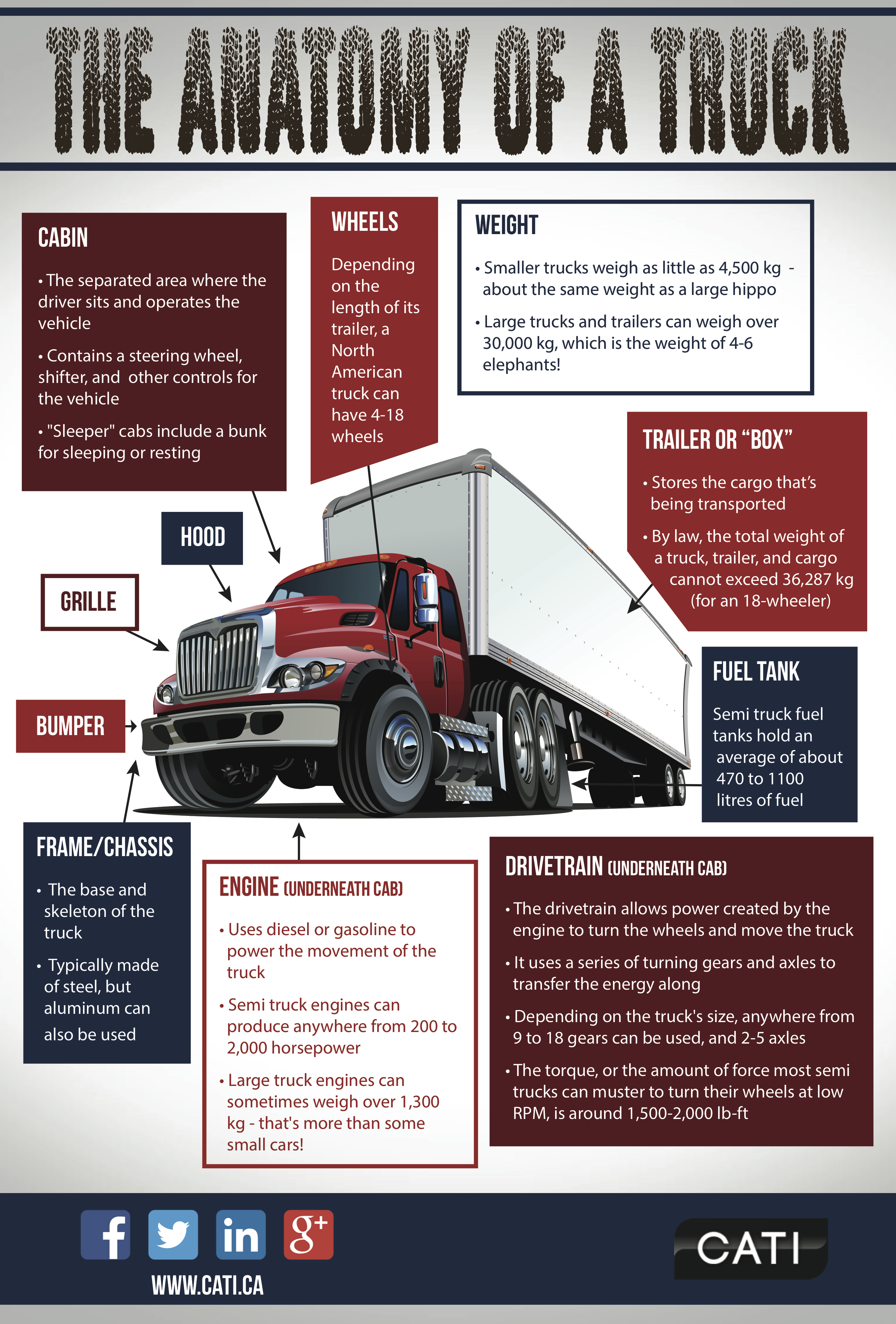 Infographic: The Anatomy of a Truck